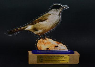 trofeo-eventos924